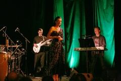 dasha-a-pajky-pajk-quartet09